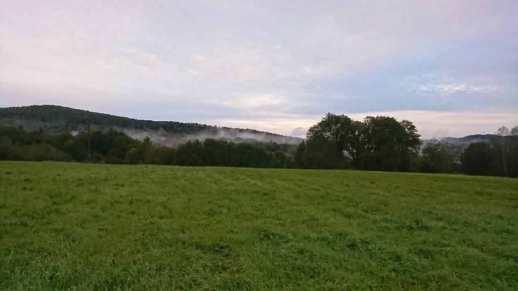 Parowanie lasu w Bieszczadach